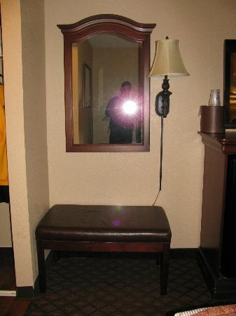 BEST WESTERN Plus Landing View Inn & Suites: Furniture