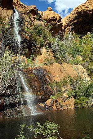 Mount Ceder Guest Cottages: Wasserfall
