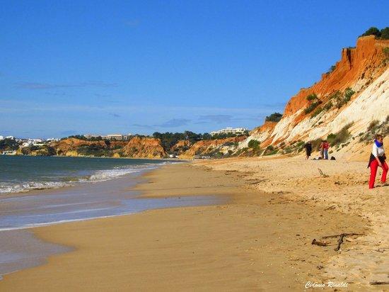 Playa de Falésia: Praia da Falésia - Albufeira - Portugal