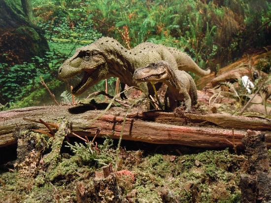 Torquays Dinosaur World: Dinosaur