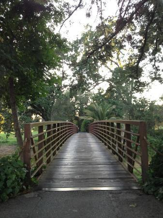 Silverado Resort and Spa: A bridge to relaxation