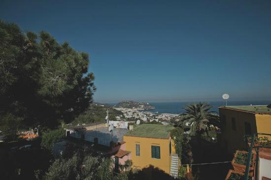 Hotel Villa Sirena: Hotel & grounds