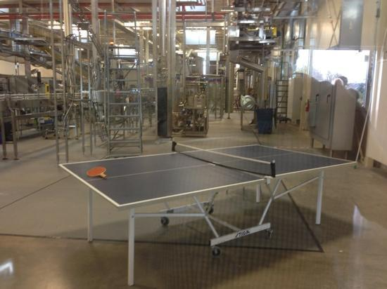 New Belgium Brewing: Ping pong table with the canning line, typical of the company's approach.