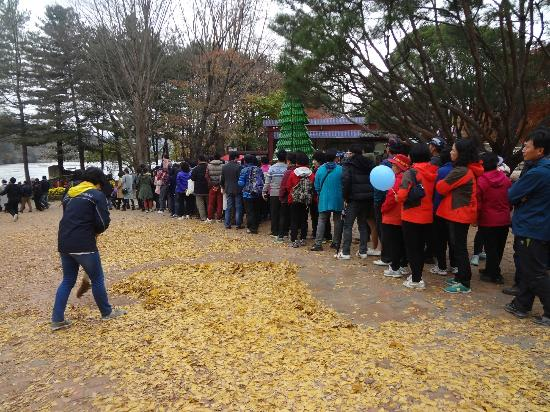 Nami Island: the long queue waiting for ferries to mainland