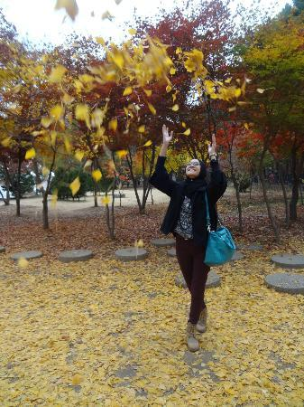 Nami Island: the falling leaves.