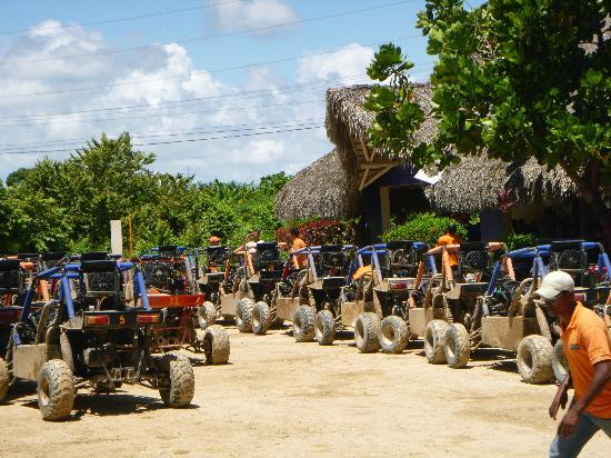 Hotel Majesctic Colonial Punta Cana: Gentelmen, start your engines!!!