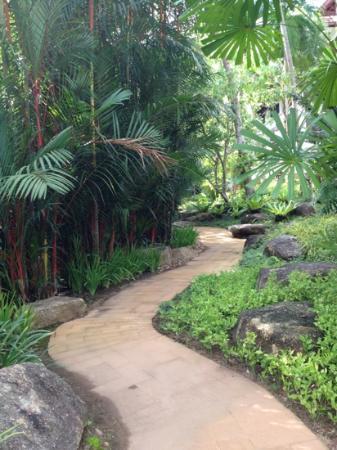 Marriott's Phuket Beach Club: Botanical Garden!