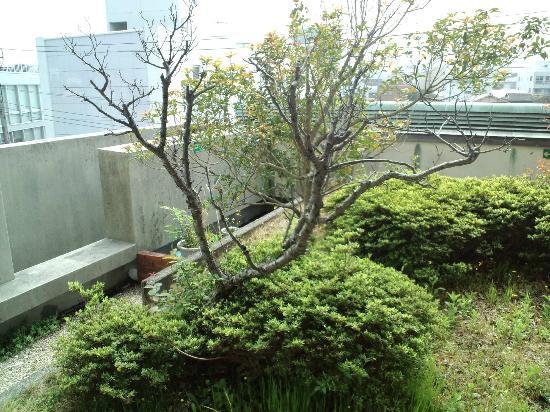 Ito Dai-ichi Hotel Tanuki-no-sato : 部屋からの眺め
