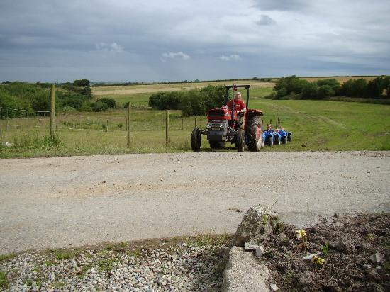 Polean Farm Cottages: Farmer Keith's Kiddie Tractor Rides