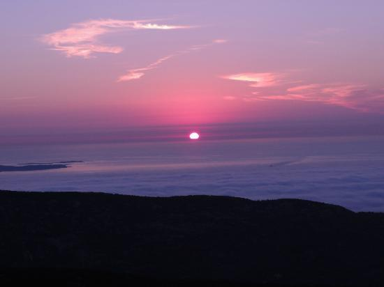 Coach Stop Inn Bed and Breakfast: Be the first to see the sunrise from Cadillac Mountain