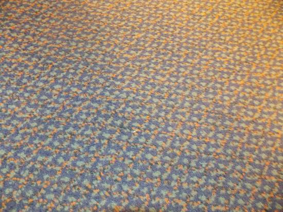 Comfort Inn by the Bay: Dirty carpet