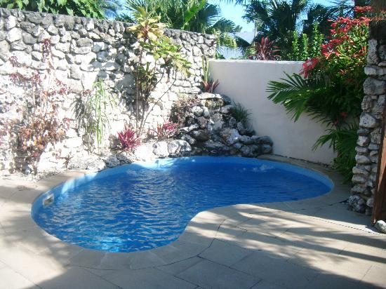 Crown Beach Resort & Spa: the private pool inside the villa