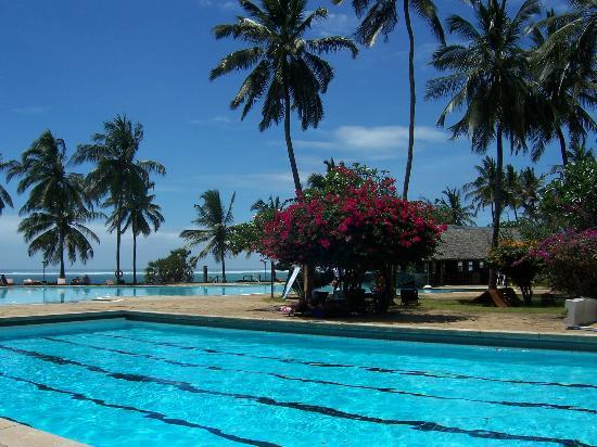 Reef Hotel: Große weitläufige Gartenanlage
