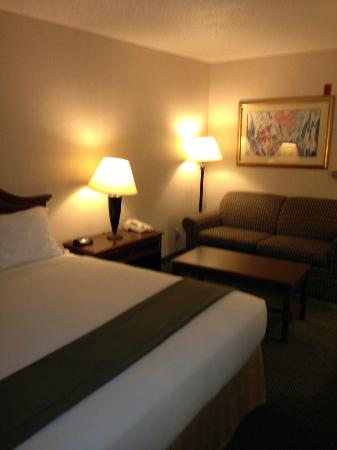 Holiday Inn Express Milwaukee N. Brown Deer/Mequon : sofa bed and coffee table