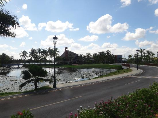 Barcelo Bavaro Palace: on the way to golf resort