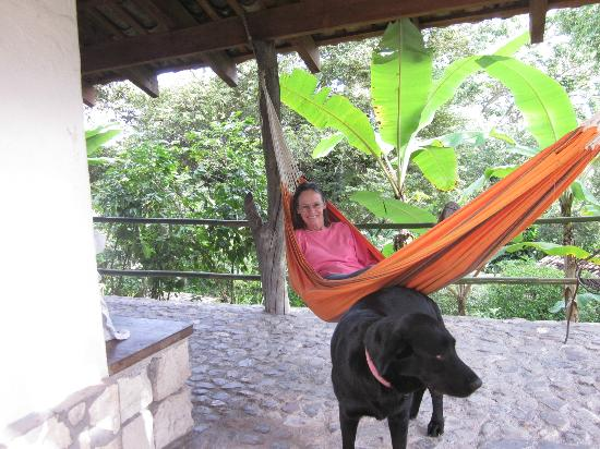 Hotel Hacienda San Lucas: Hammock outside our room