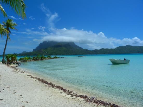 BORA VAITE LODGE Pensione (Bora Bora, Polinesia francese): Prezzi ...