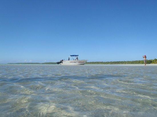 Wet & Wild Aitutaki : The boat