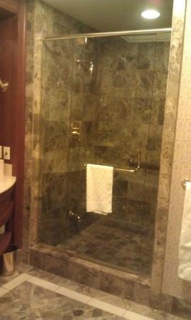 Hilton Lac-Leamy: Separate glass shower