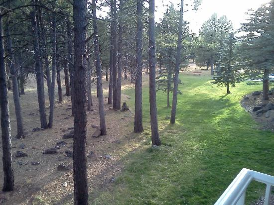 Little America Hotel Flagstaff : View