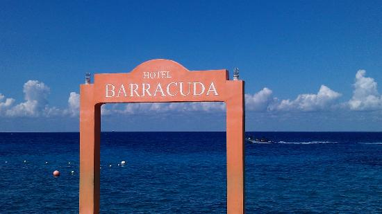 Barracuda: View ocean side of hotel- Awesome snorkeling here!!