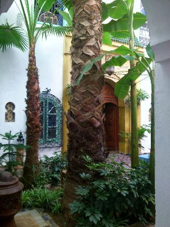 Maison Arabo Andalouse: courtyard