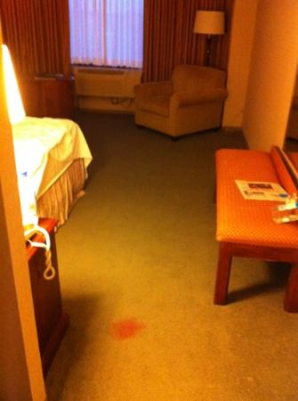 GuestHouse Inn-Bloomington: mystery red stain in room 501