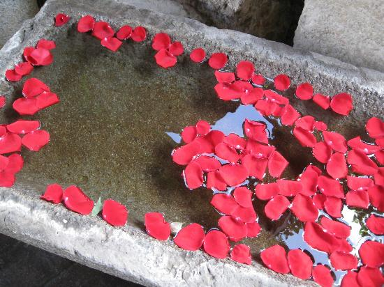 Casa Santo Domingo: Beautiful Rose Petals in Troughs...everywhere.