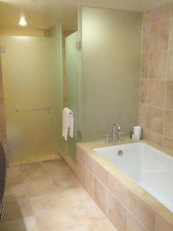 The Beverly Hilton: Shower/Bath room 366