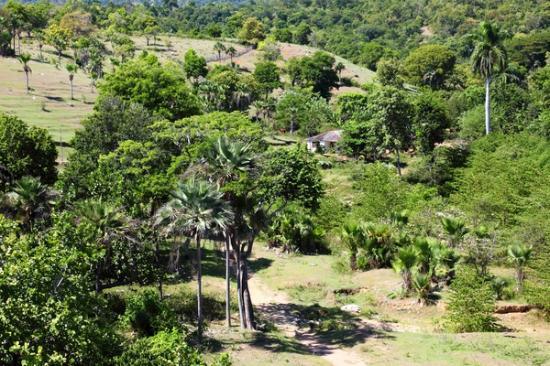 Desembarco del Granma National Park: Pilon area, Cuba.