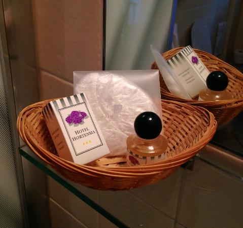 Hotel Hortensia: the hotel offers some amenities