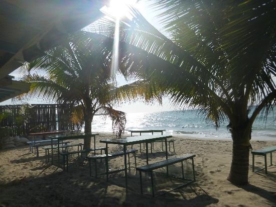 Alfred's Ocean Palace: Beach