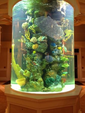 DoubleTree by Hilton Hotel Grand Key Resort - Key West: the aquarium in atrium