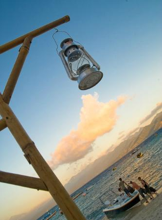 Scallywags Resort 사진