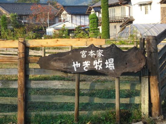 Satoyamakaguhashi Miyamotonoyu: goat farm