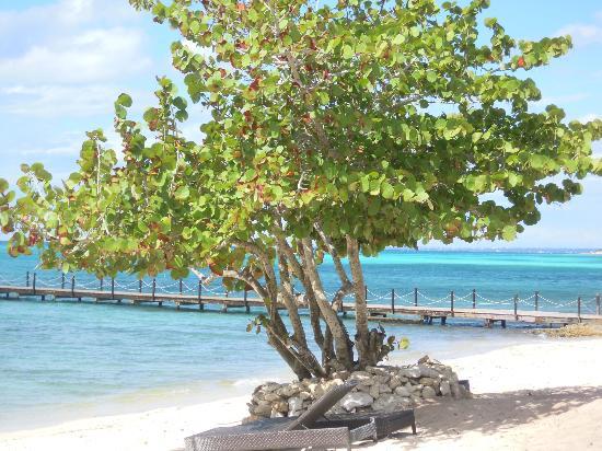 Weare Cadaques Bayahibe Hotel: ..más playa