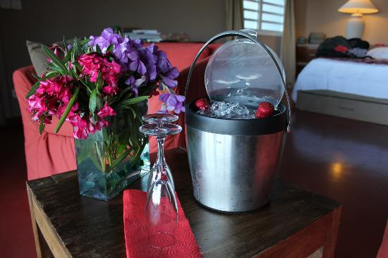 Karibuni Lodge : our welcome drinks. flowers were a nice touch! :)