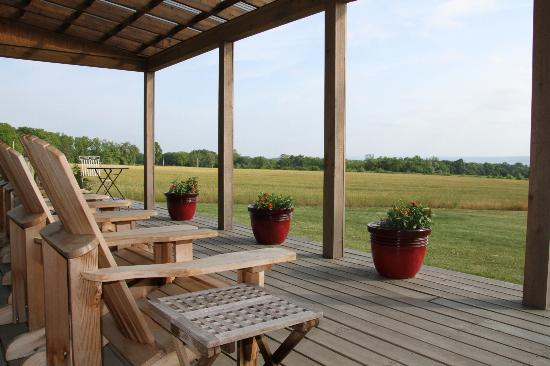 Zugibe Vineyards: The deck