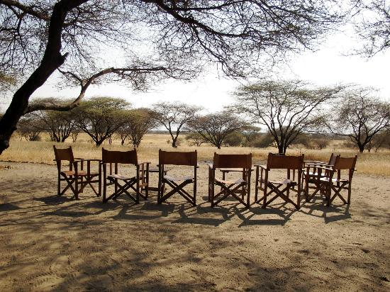 Manyara Ranch Conservancy: looking out from the dining tent