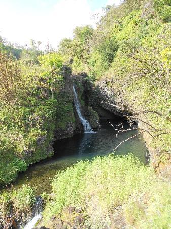 Road to Hana Tours: Water fall