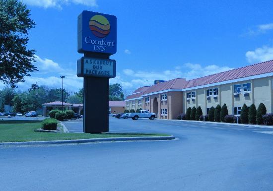 Comfort Inn: Exterior-in summer