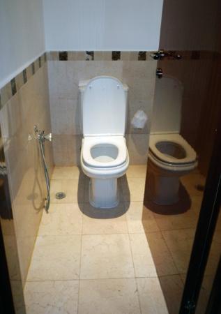 Hyatt Regency Casablanca: toilet