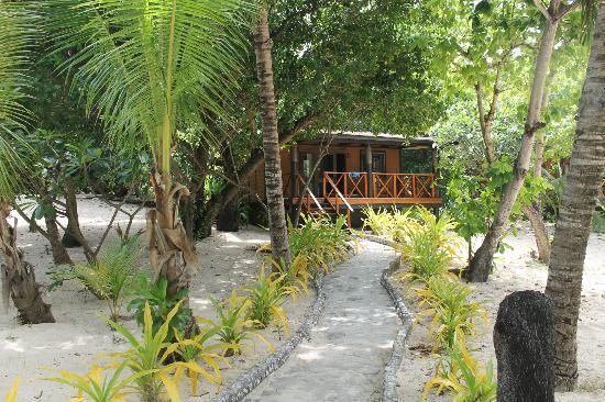 Tavarua Island Resort: Bure #1