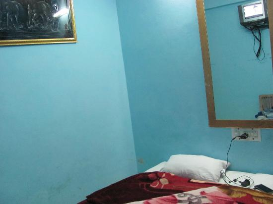 Sahil Plaza Hotel : Room2