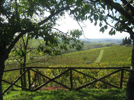 View from Hotel Belvedere Di San Leonino