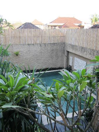 Bagus Hayden Hotel : Small Pool