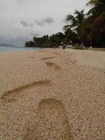 Palm Island Resort & Spa: Bearfoot beaches