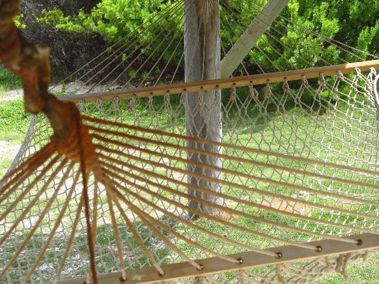 Palm Island Resort & Spa: Where life begins
