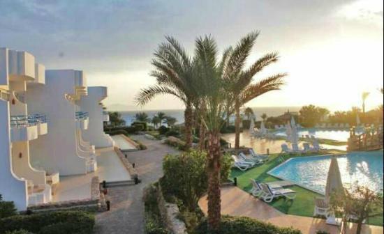 Queen Sharm Resort: vista dal View