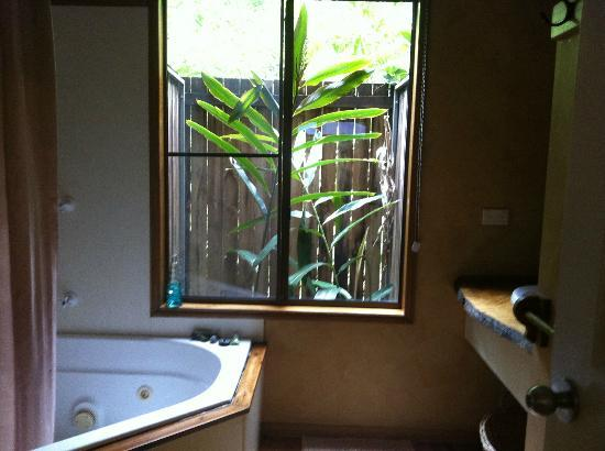 Crater Lakes Rainforest Cottages : bathroom